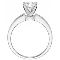 Quinn Channel-Set Diamond Engagement Ring by Eternity (.25 ctw.)