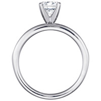 Sage Channel Set Engagement Ring (.50 ctw.)