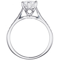 Nadia Diamond Channel Set Ring in Cathedral Setting (.14 ctw.)