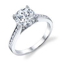 Viola Channel Set Cathedral Diamond Ring (.24 ctw.)